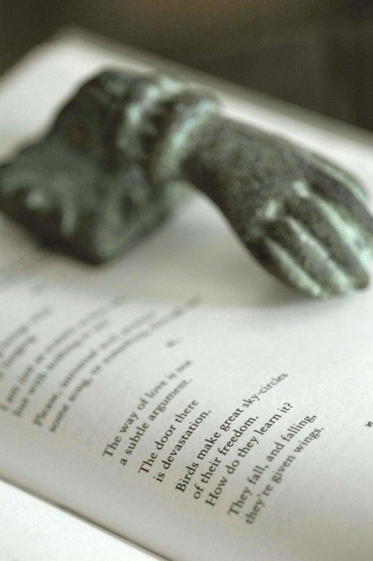 wingsbook3