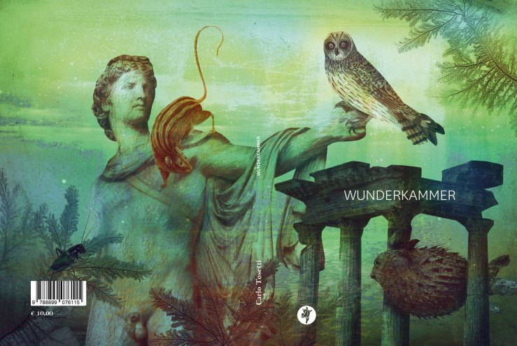 copertina_wunderkammer_b1, rid